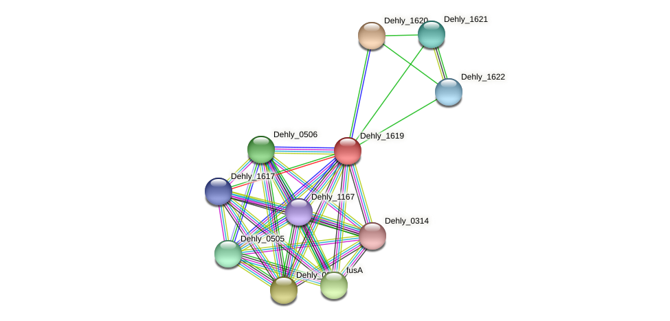 Dehly_1619 protein (Dehalogenimonas lykanthroporepellens) - STRING interaction network