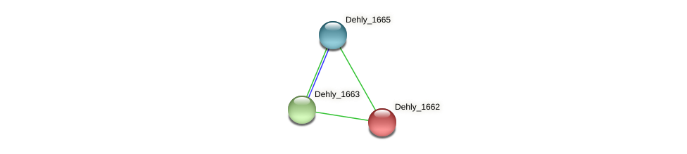 Dehly_1662 protein (Dehalogenimonas lykanthroporepellens) - STRING interaction network