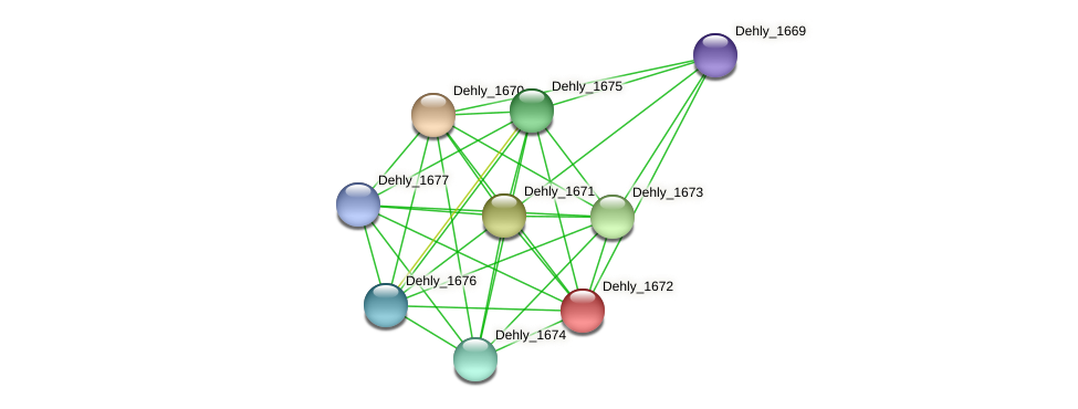 Dehly_1672 protein (Dehalogenimonas lykanthroporepellens) - STRING interaction network