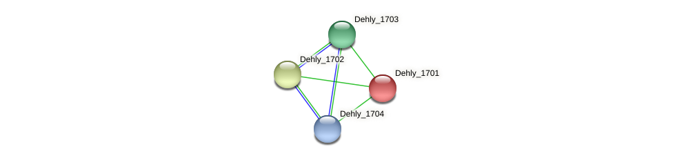 Dehly_1701 protein (Dehalogenimonas lykanthroporepellens) - STRING interaction network