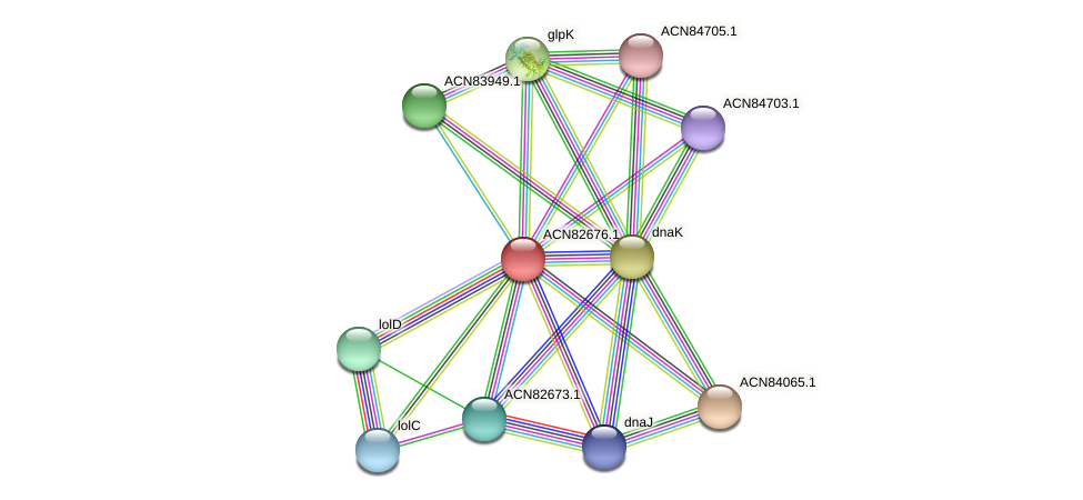 ACN82676.1 protein (Brachyspira hyodysenteriae) - STRING interaction network