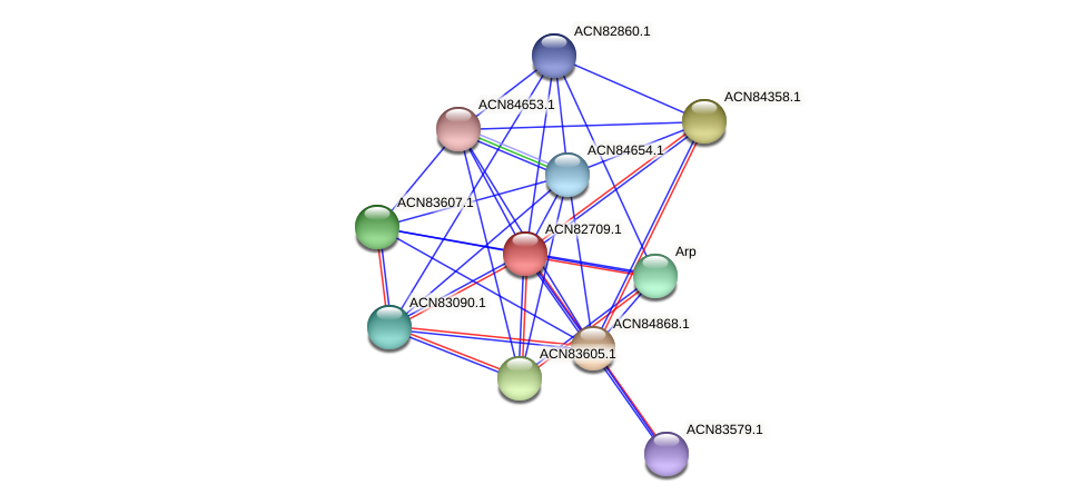 ACN82709.1 protein (Brachyspira hyodysenteriae) - STRING interaction network