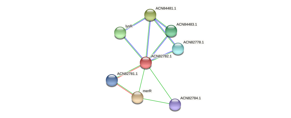 BHWA1_00282 protein (Brachyspira hyodysenteriae) - STRING interaction network