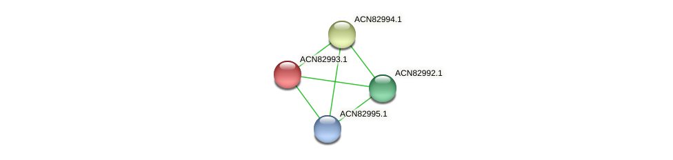 ACN82993.1 protein (Brachyspira hyodysenteriae) - STRING interaction network