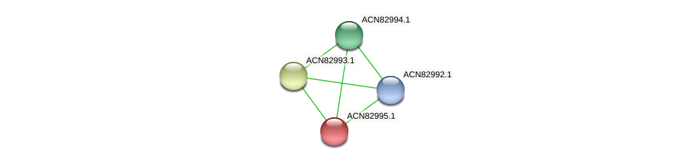ACN82995.1 protein (Brachyspira hyodysenteriae) - STRING interaction network