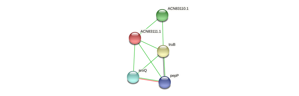 ACN83111.1 protein (Brachyspira hyodysenteriae) - STRING interaction network