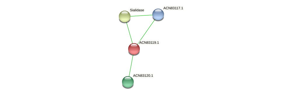 ACN83119.1 protein (Brachyspira hyodysenteriae) - STRING interaction network
