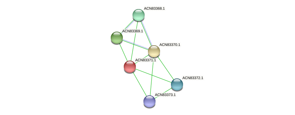 ACN83371.1 protein (Brachyspira hyodysenteriae) - STRING interaction network