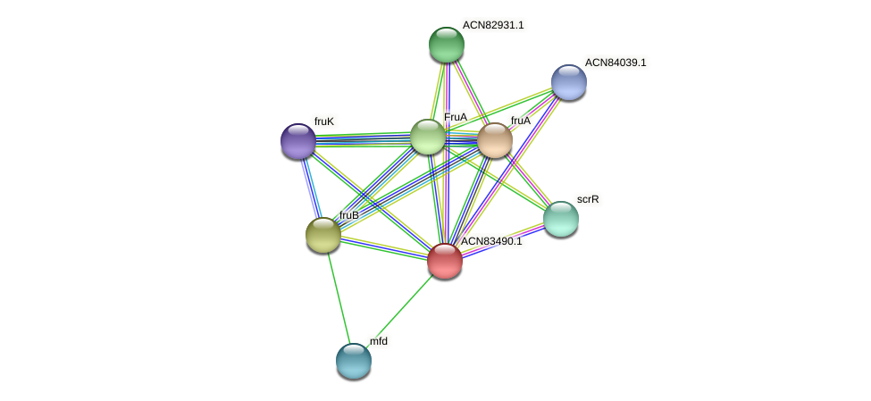 ACN83490.1 protein (Brachyspira hyodysenteriae) - STRING interaction network