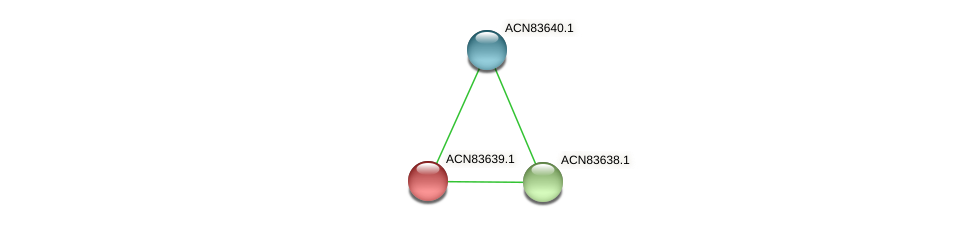 ACN83639.1 protein (Brachyspira hyodysenteriae) - STRING interaction network