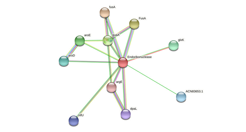 BHWA1_01174 protein (Brachyspira hyodysenteriae) - STRING interaction network