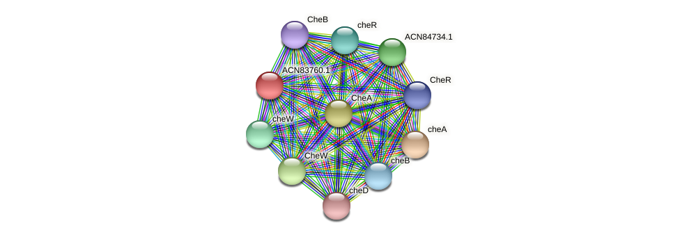 ACN83760.1 protein (Brachyspira hyodysenteriae) - STRING interaction network