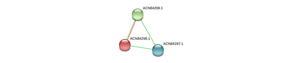 ACN84298.1 protein (Brachyspira hyodysenteriae) - STRING interaction network