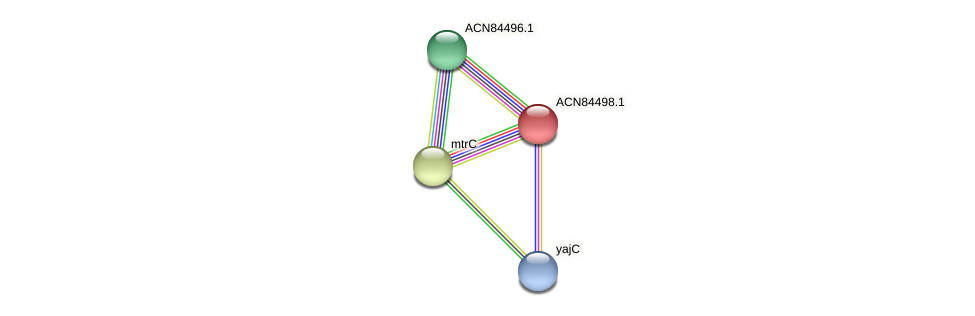 ACN84498.1 protein (Brachyspira hyodysenteriae) - STRING interaction network