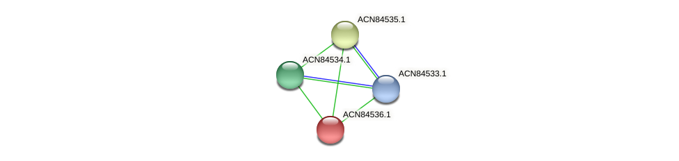 ACN84536.1 protein (Brachyspira hyodysenteriae) - STRING interaction network