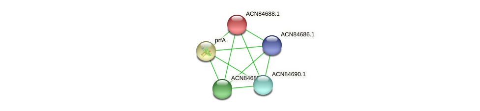 ACN84688.1 protein (Brachyspira hyodysenteriae) - STRING interaction network
