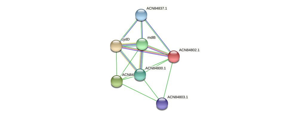 ACN84802.1 protein (Brachyspira hyodysenteriae) - STRING interaction network