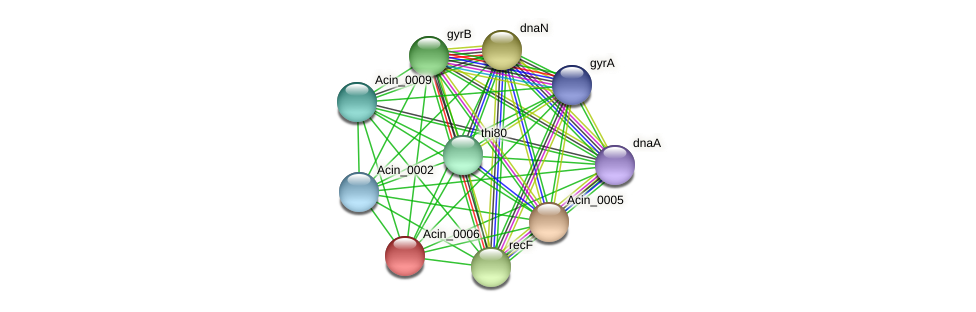 Acin_0006 protein (Acidaminococcus intestini) - STRING interaction network