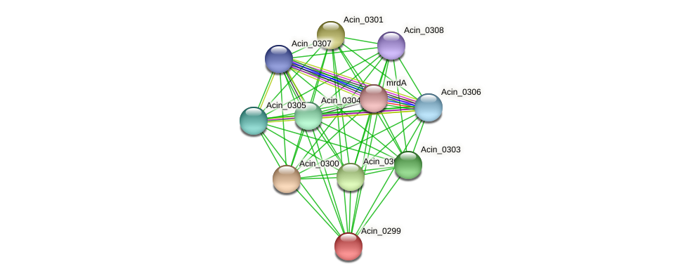 Acin_0299 protein (Acidaminococcus intestini) - STRING interaction network