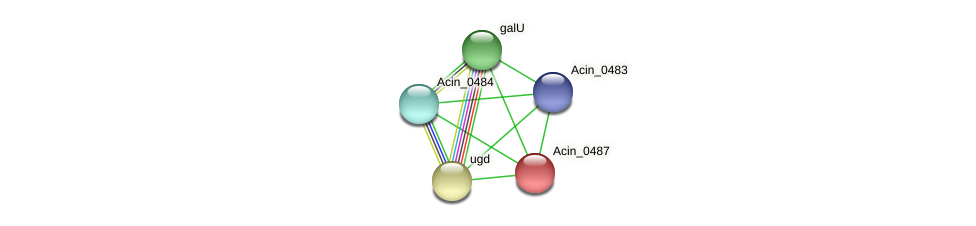 Acin_0487 protein (Acidaminococcus intestini) - STRING interaction network