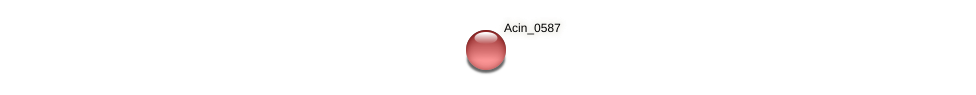 Acin_0587 protein (Acidaminococcus intestini) - STRING interaction network