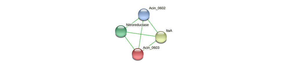 Acin_0603 protein (Acidaminococcus intestini) - STRING interaction network