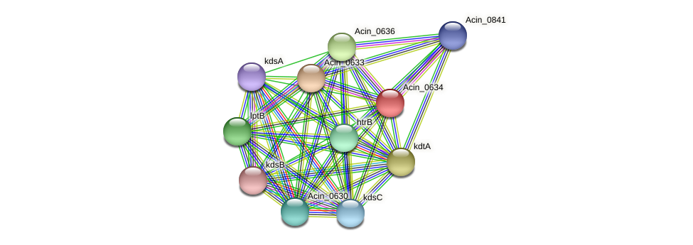 Acin_0634 protein (Acidaminococcus intestini) - STRING interaction network