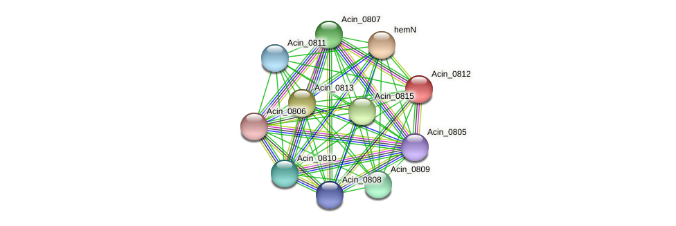 Acin_0812 protein (Acidaminococcus intestini) - STRING interaction network