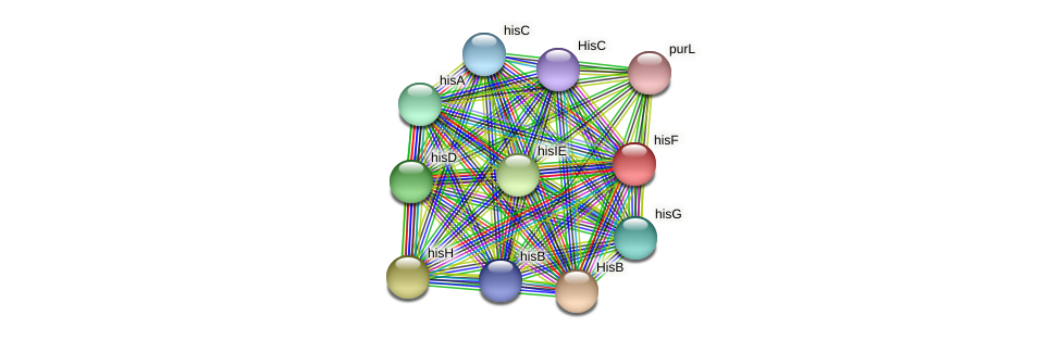 hisF protein (Acidaminococcus intestini) - STRING interaction network