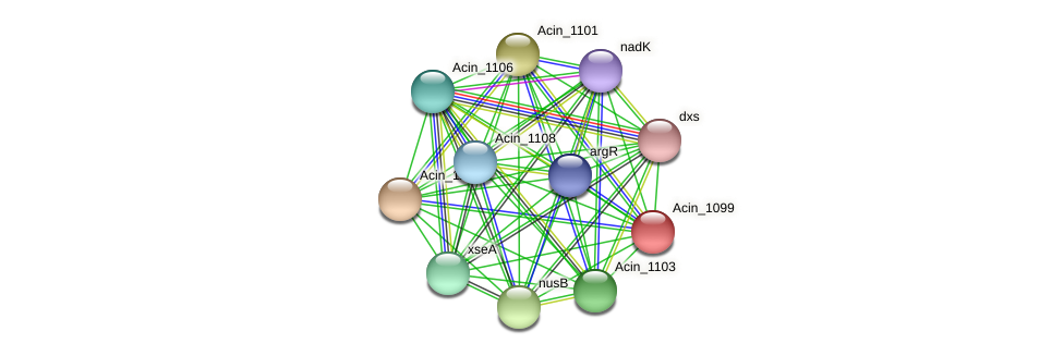 Acin_1099 protein (Acidaminococcus intestini) - STRING interaction network