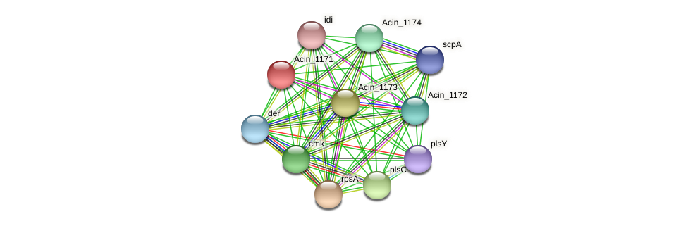 Acin_1171 protein (Acidaminococcus intestini) - STRING interaction network