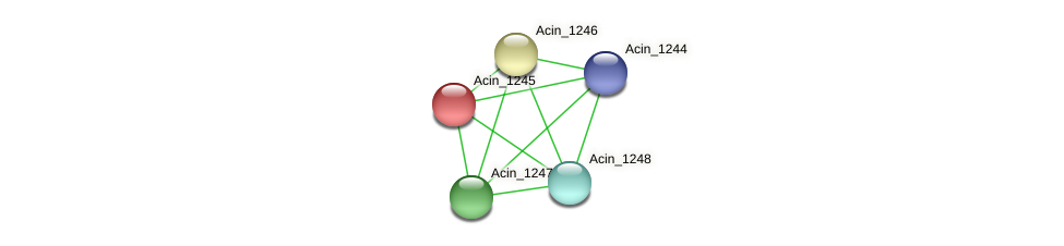 Acin_1245 protein (Acidaminococcus intestini) - STRING interaction network