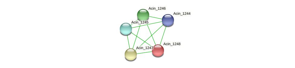 Acin_1248 protein (Acidaminococcus intestini) - STRING interaction network