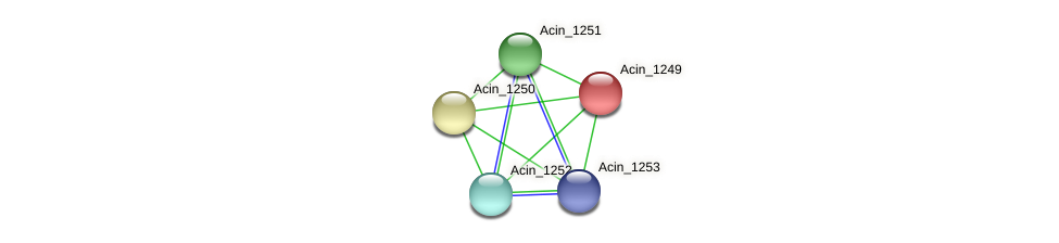 Acin_1249 protein (Acidaminococcus intestini) - STRING interaction network