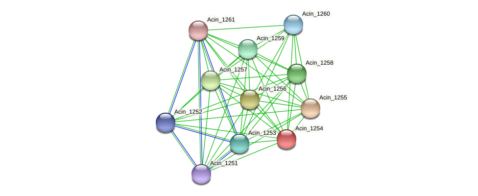 Acin_1254 protein (Acidaminococcus intestini) - STRING interaction network