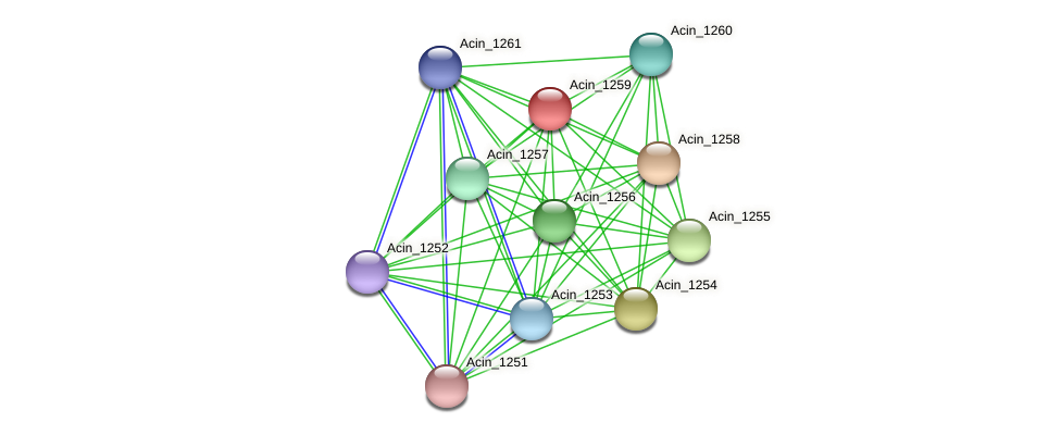Acin_1259 protein (Acidaminococcus intestini) - STRING interaction network