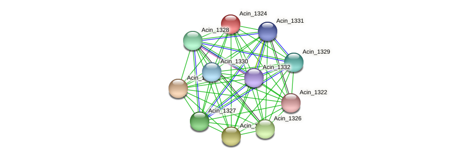 Acin_1324 protein (Acidaminococcus intestini) - STRING interaction network