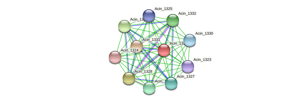 Acin_1333 protein (Acidaminococcus intestini) - STRING interaction network