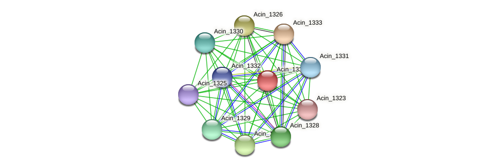 Acin_1334 protein (Acidaminococcus intestini) - STRING interaction network