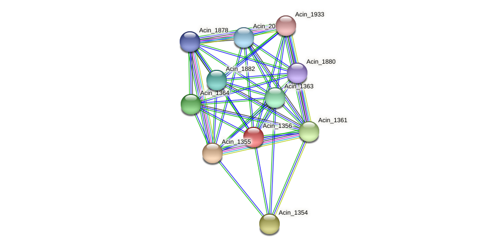 Acin_1356 protein (Acidaminococcus intestini) - STRING interaction network