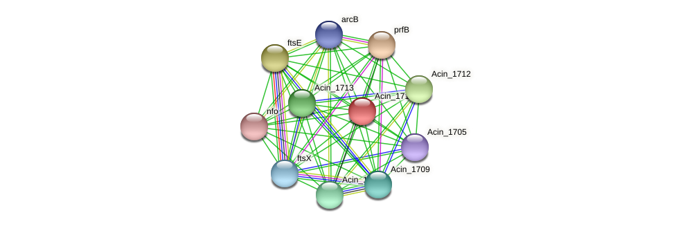 Acin_1715 protein (Acidaminococcus intestini) - STRING interaction network