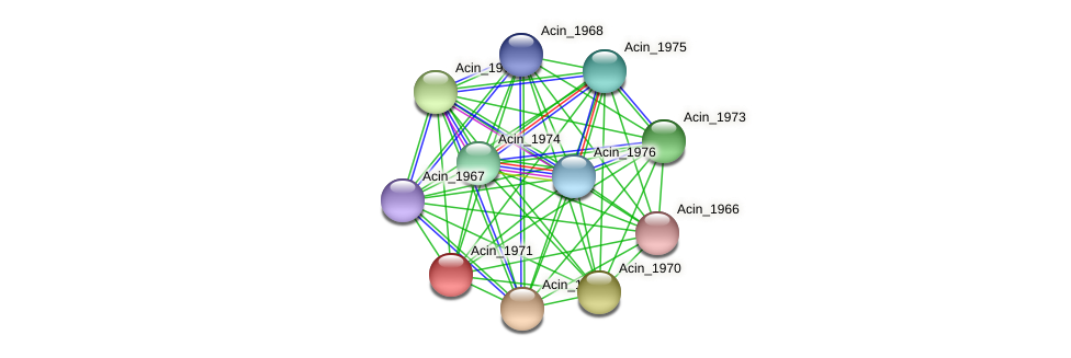 Acin_1971 protein (Acidaminococcus intestini) - STRING interaction network