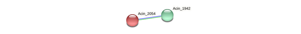 Acin_2054 protein (Acidaminococcus intestini) - STRING interaction network