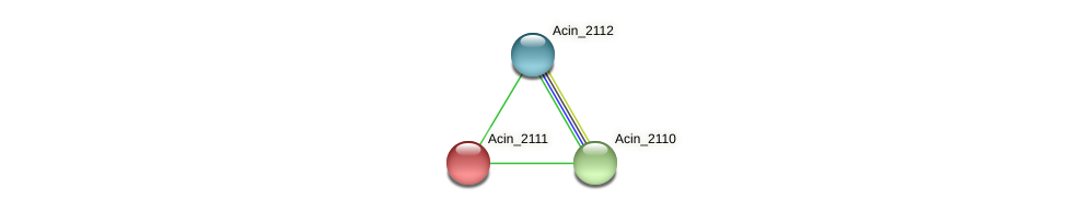 Acin_2111 protein (Acidaminococcus intestini) - STRING interaction network
