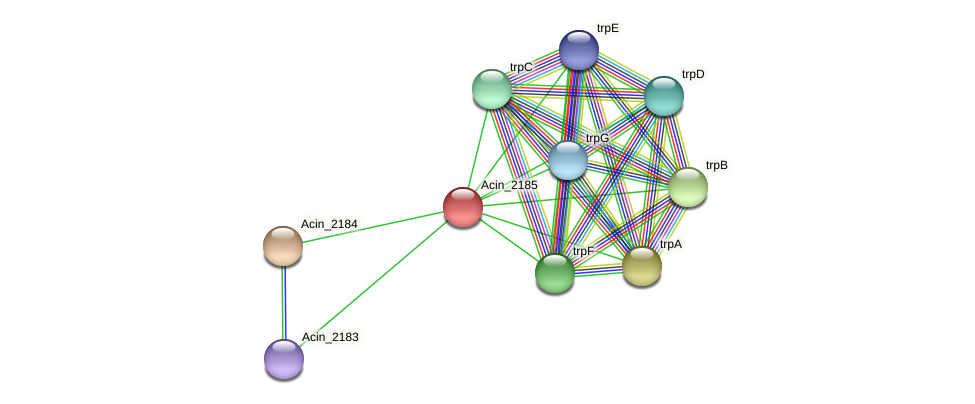 Acin_2185 protein (Acidaminococcus intestini) - STRING interaction network