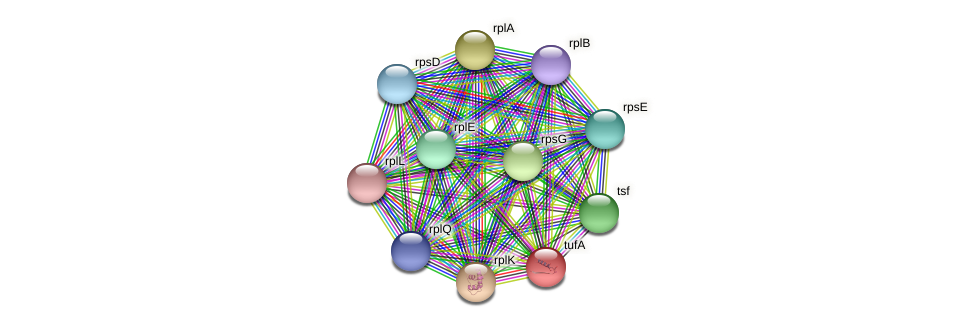 Acin_2215 protein (Acidaminococcus intestini) - STRING interaction network