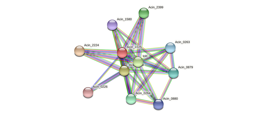 Acin_2225 protein (Acidaminococcus intestini) - STRING interaction network