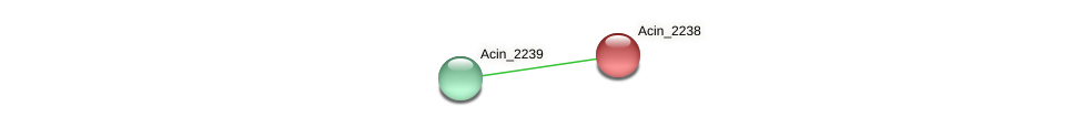 Acin_2238 protein (Acidaminococcus intestini) - STRING interaction network