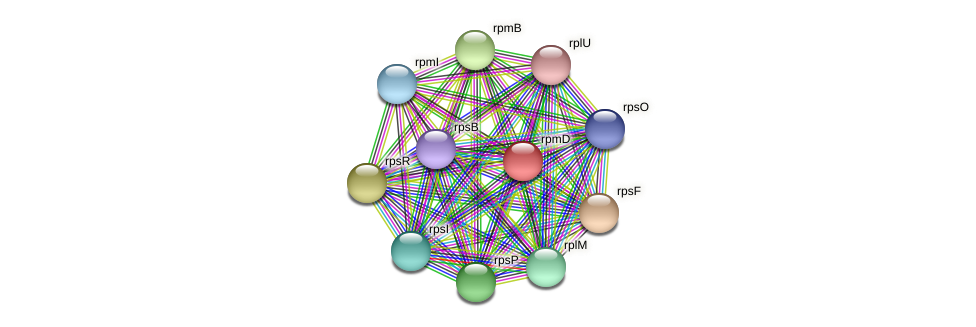rpmD protein (Acidaminococcus intestini) - STRING interaction network