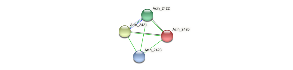 Acin_2420 protein (Acidaminococcus intestini) - STRING interaction network
